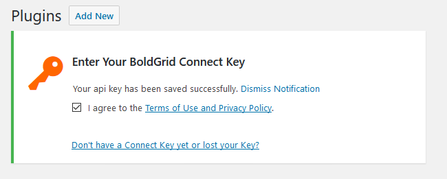 Successfully entering your BoldGrid Connect Key