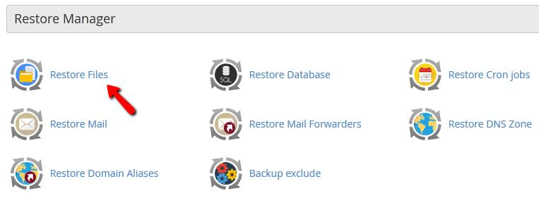 restore file cpanel