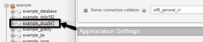 Access Drupal database via phpMyAdmin