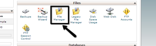 Access File Manager via cPanel