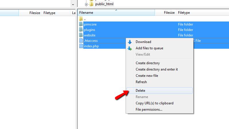 Remove existing Pimcore Files