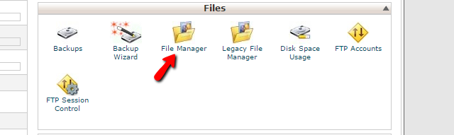 Accessing the cPanel File Manager