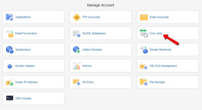 Accessing the Cron Jobs menu via your Client Area