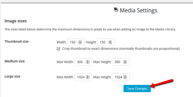 Overview of the Media Settings for your website
