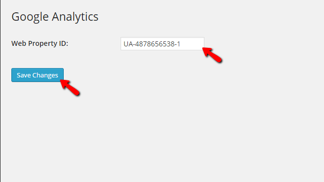 configuring the google analytics plugin