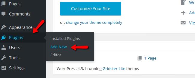 Accessing the WordPress Plugin Installer