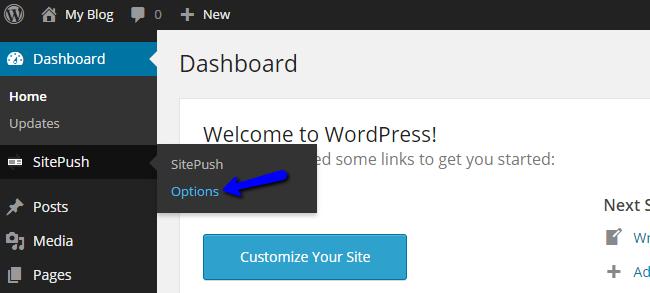 Edit Staging Options in WordPress