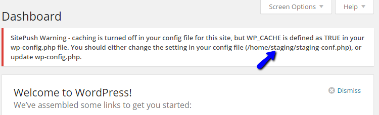 WordPress Staging Cache Warning