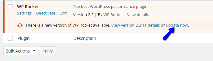 WP Rocket upgrade details